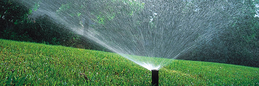 Rainbird spray watering turf grass